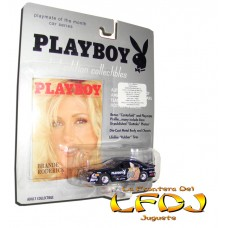 Playmate of the Month Car Series: Brande Roderick - Nascar