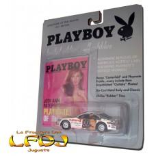 Playmate of the Month Car Series: Jodi Ann Paterson - Nascar